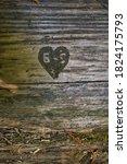 Tree Carving Humboldt Redwoods...