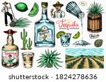 Tequila bottle, shot with lime, blue agave Plant, barrel and root ingredient, farmer and harvest. Engraved hand drawn vintage sketch. Woodcut style. Vector illustration for menu or poster.