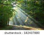 beautidul sunbeams in green... | Shutterstock . vector #182437880