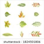 Autumn Leaves Or Fall Foliage...