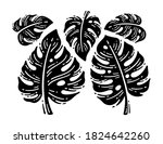 beautiful doodles hand drawn... | Shutterstock .eps vector #1824642260