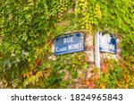 Close Up Of Street Signs On Ivy ...