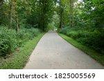 Nature Bike Path Through Fores...