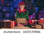Full Length Photo Of Elf Sit...