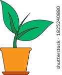 plant in flower pot icon....
