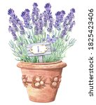 Clip Art  With  Provence...