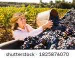 Young Female Winegrower...