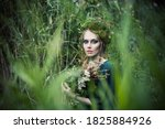 Beautiful Fairy Witch Woman In...
