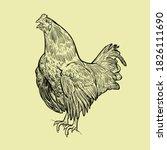 Vintage Hand Drawn Chicken...