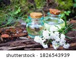 Yarrow Essential Oil In The...