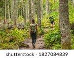Hike Trail Hiker Woman Walking...