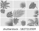 realistic shadow overlay effect ...   Shutterstock .eps vector #1827213509