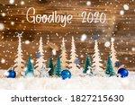 Christmas Tree  Snow  Blue Star ...
