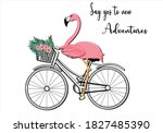 Flamingo Bicycle Hand Drawn...