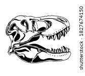 T Rex Dinosaur Skull Isolated...