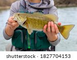 Fly fishing for small mouth bass
