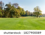 Large Lawn With Mown Grass At...