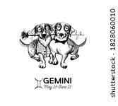 gemini funny dogs zodiac signs. ...   Shutterstock .eps vector #1828060010
