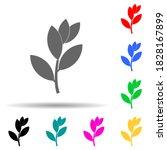 bay laurel tree multi color...