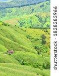 Mountain Landscape In Doi Phu...