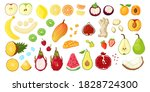 big set with tropical fruit ... | Shutterstock .eps vector #1828724300