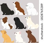 set of flat colored adorable...   Shutterstock .eps vector #1828765289
