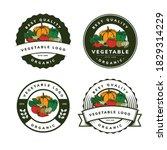 organic vegetable template logo ... | Shutterstock .eps vector #1829314229