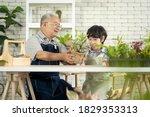 Asian Retired Elderly...