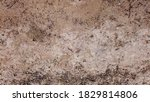 solid soil background. ground... | Shutterstock . vector #1829814806