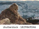 Bigfoot Sasquatch Strolling...
