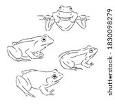 Outline Drawing Of A Frog...