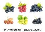 set of fresh grapes on white... | Shutterstock . vector #1830162260