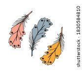 colorful detailed bird feathers ...   Shutterstock .eps vector #1830584810