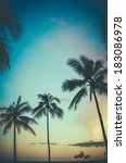 faded retro style photo of palm ... | Shutterstock . vector #183086978