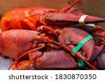 Pile Of Live Lobsters ...