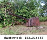 An Old Cannon From Wwii In Palau