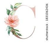 Letter C  Pink Letter  Floral...
