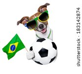 Brazil Soccer Dog  With Ball ...
