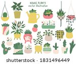 House Plants Hand Drawn Clipart ...