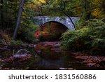 Stone Bridge In Rockefeller...