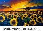 Oil Painting. Sunflower Field....