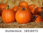 pumpkins on straw in fall   Shutterstock . vector #18318373