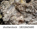 the texture of the rock... | Shutterstock . vector #1831865680