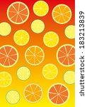 summer citrus | Shutterstock .eps vector #183213839