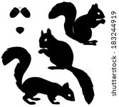 Set Of Squirrels Silhouettes...