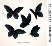 vector set of black high... | Shutterstock .eps vector #1832457436