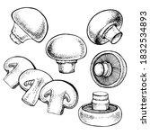 vector set of champignon... | Shutterstock .eps vector #1832534893