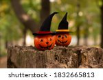 Two Funny Halloween Pumpkins In ...