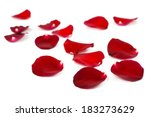 Stock photo red rose petals isolated on white 183273629