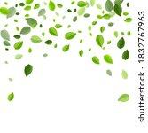 green greens wind vector design....   Shutterstock .eps vector #1832767963